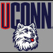 Networking Story: How I Got a Job Working For the UCONN Huskies